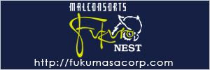Malconsorts FUKURO Nest マルコンソール・梟・ネスト